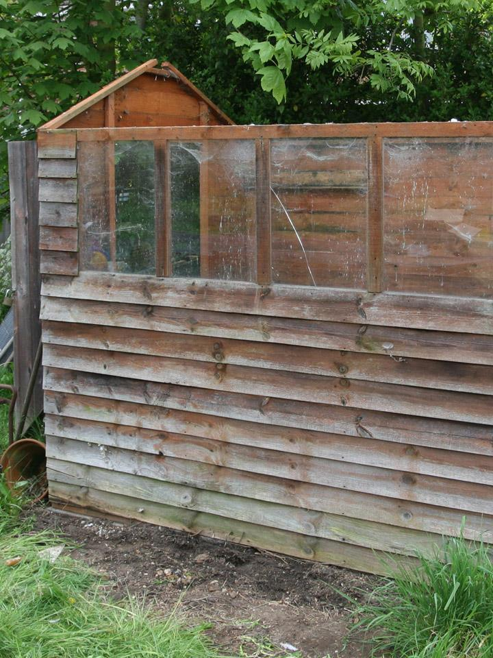 Shed in Garden that is Very Beat Down